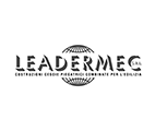 Leadermec
