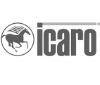 Icaro Machinery